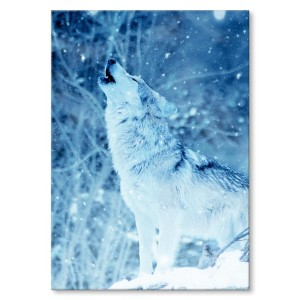 Plakat metalowy Winter wolf