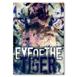 Poster metalowy Eye of the tiger