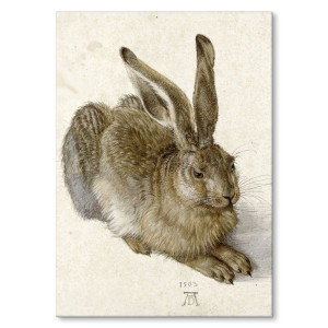 Poster metalowy Young Hare Durer