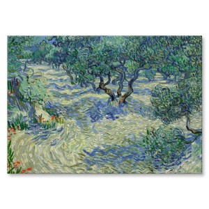 Poster metalowy Olive orchard van Gogh